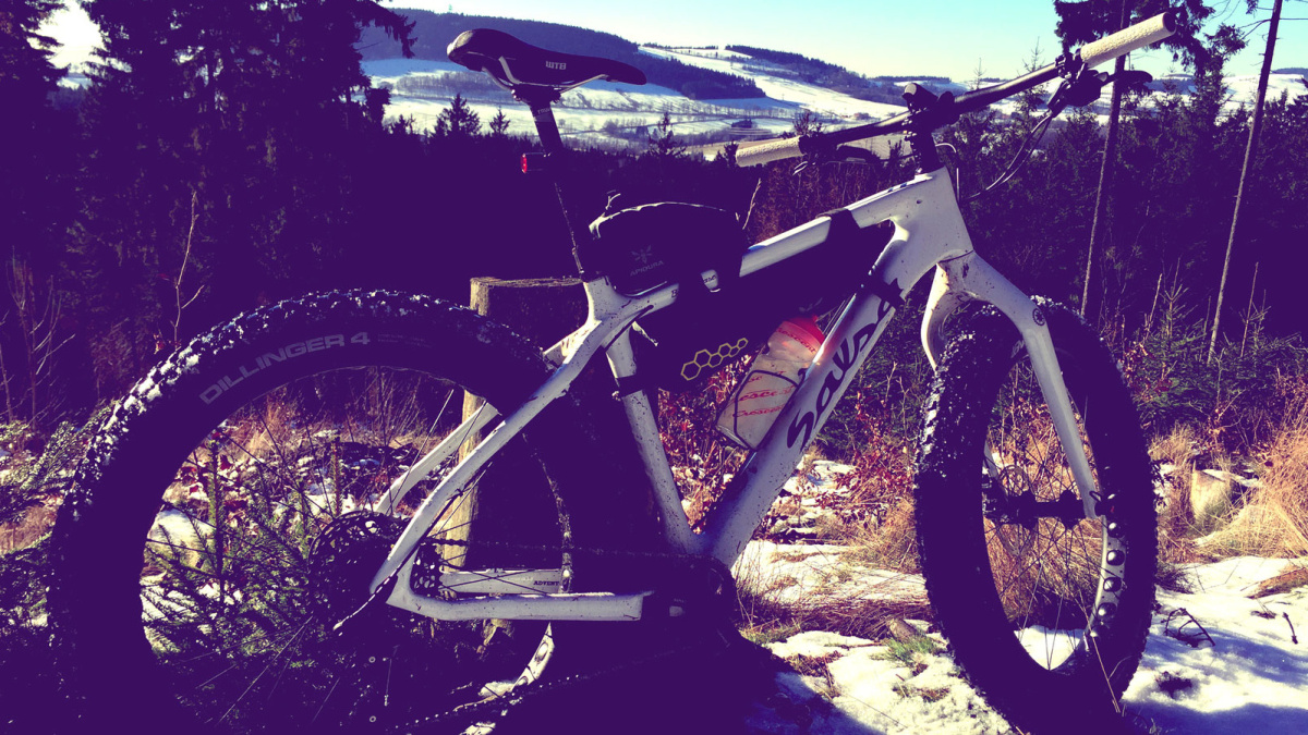 Salsa Beargrease Carbon
